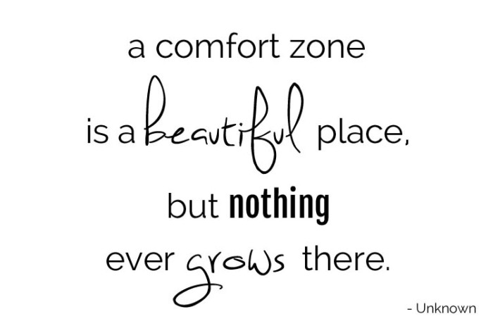 Comfort Zone Quotes - A comfort zone is a beautiful place, but n